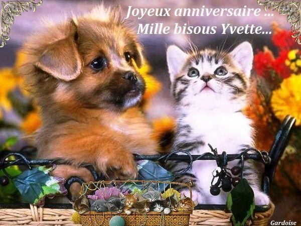 Joyeux anniversaire Yvette