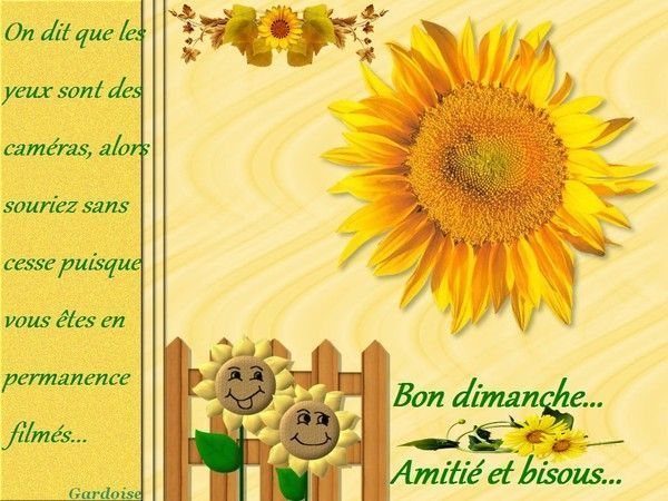 Bon dimanche