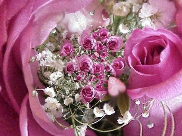 Joli bouquet de l'amitié chez lovelyfotos