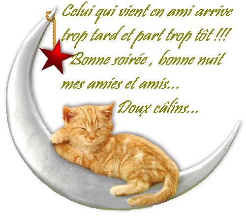 Bonne soirée, bonne nuit