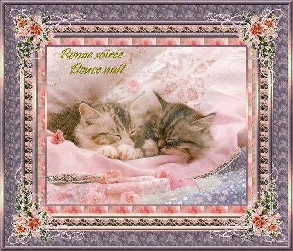 Bonne soirée, douce nuit