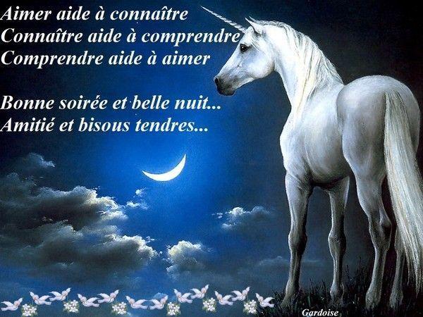 Bonne soirée et bonne nuit