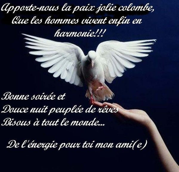 Bonne soire, douce nuit